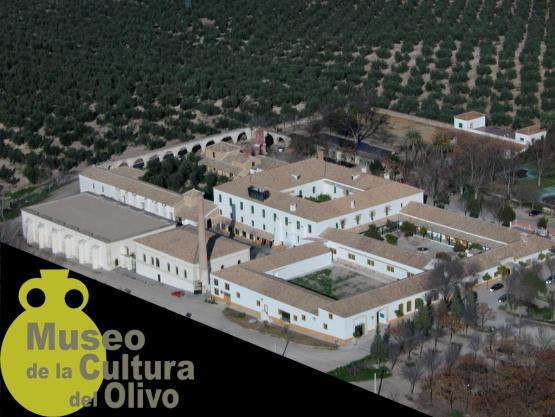 POA-8 HACIENDA DE LA LAGUNA: EL OLIVAR MODERNIZADO 1
